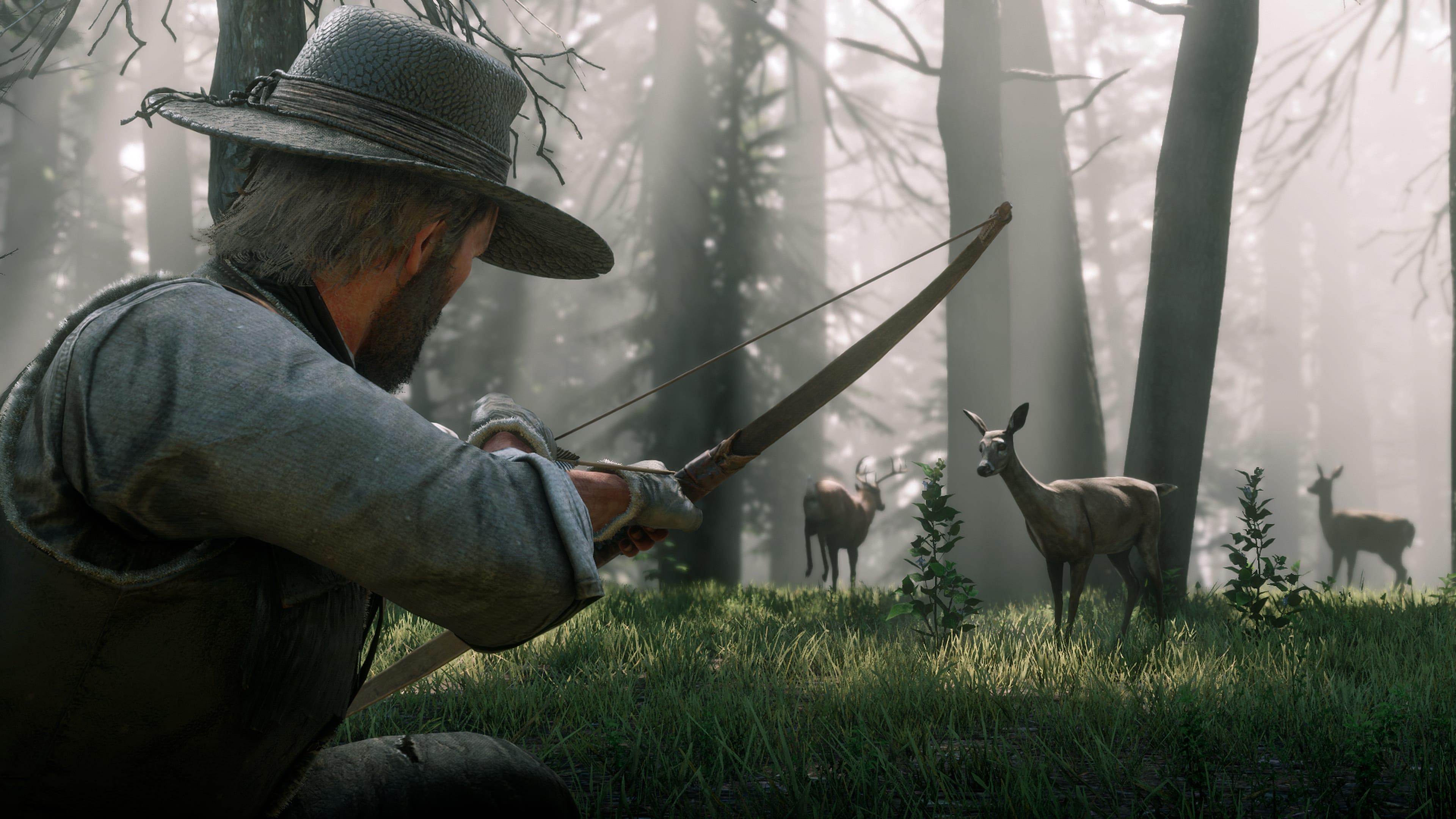 Red Dead Redemption 2 - Hunt