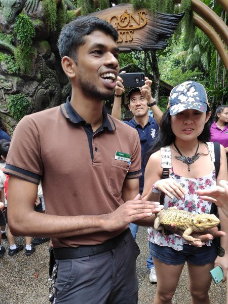 Singapore Zoo - Dragons & Beasts 03
