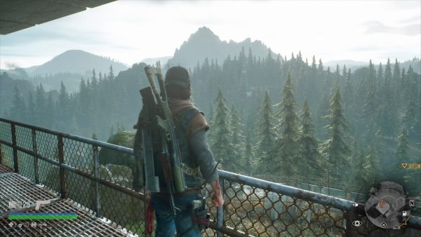 review - days gone - 03