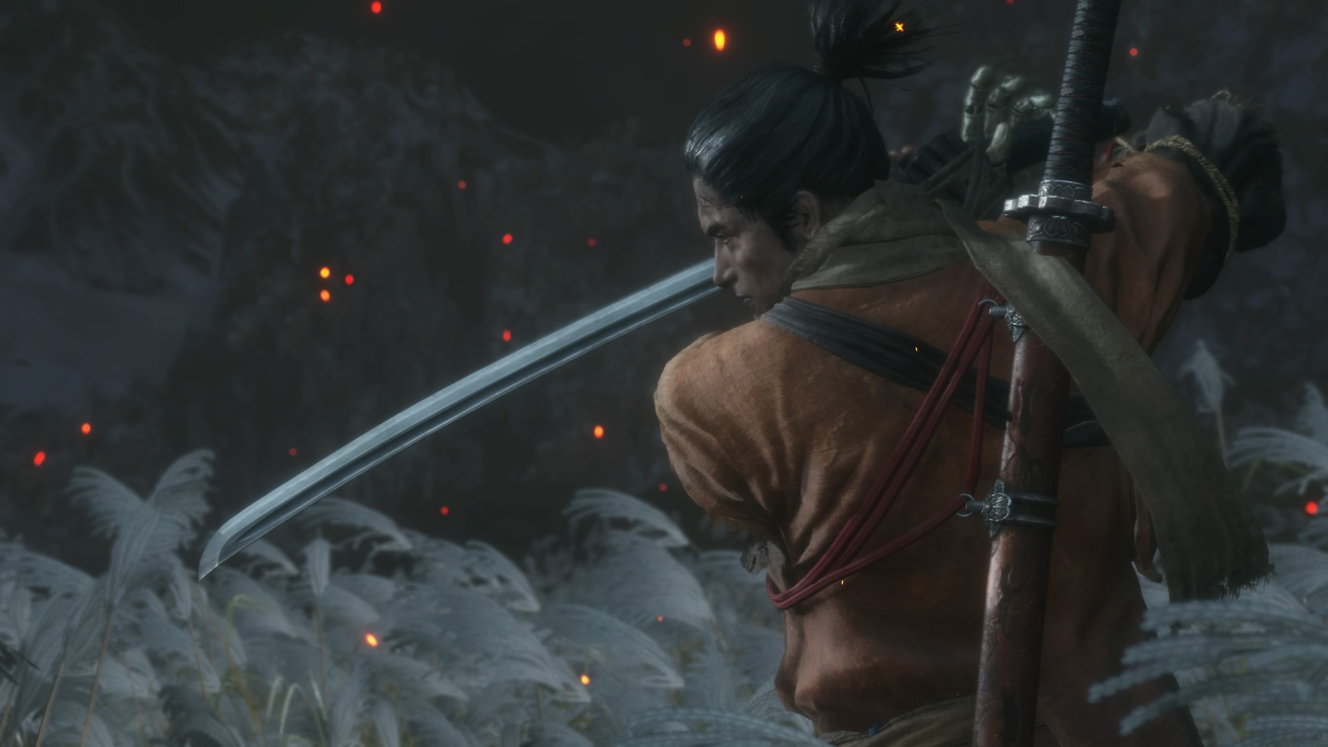 Sekiro Shadows Die Twice - Review 09